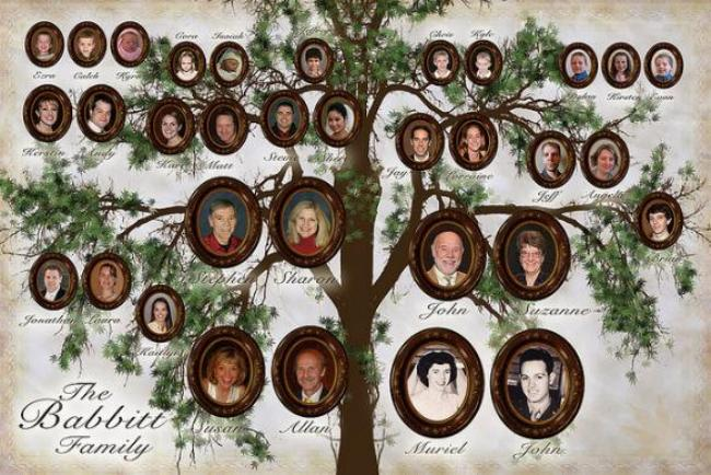 Семейное древо сделать своими руками
