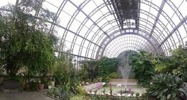 «Сад живых тропических